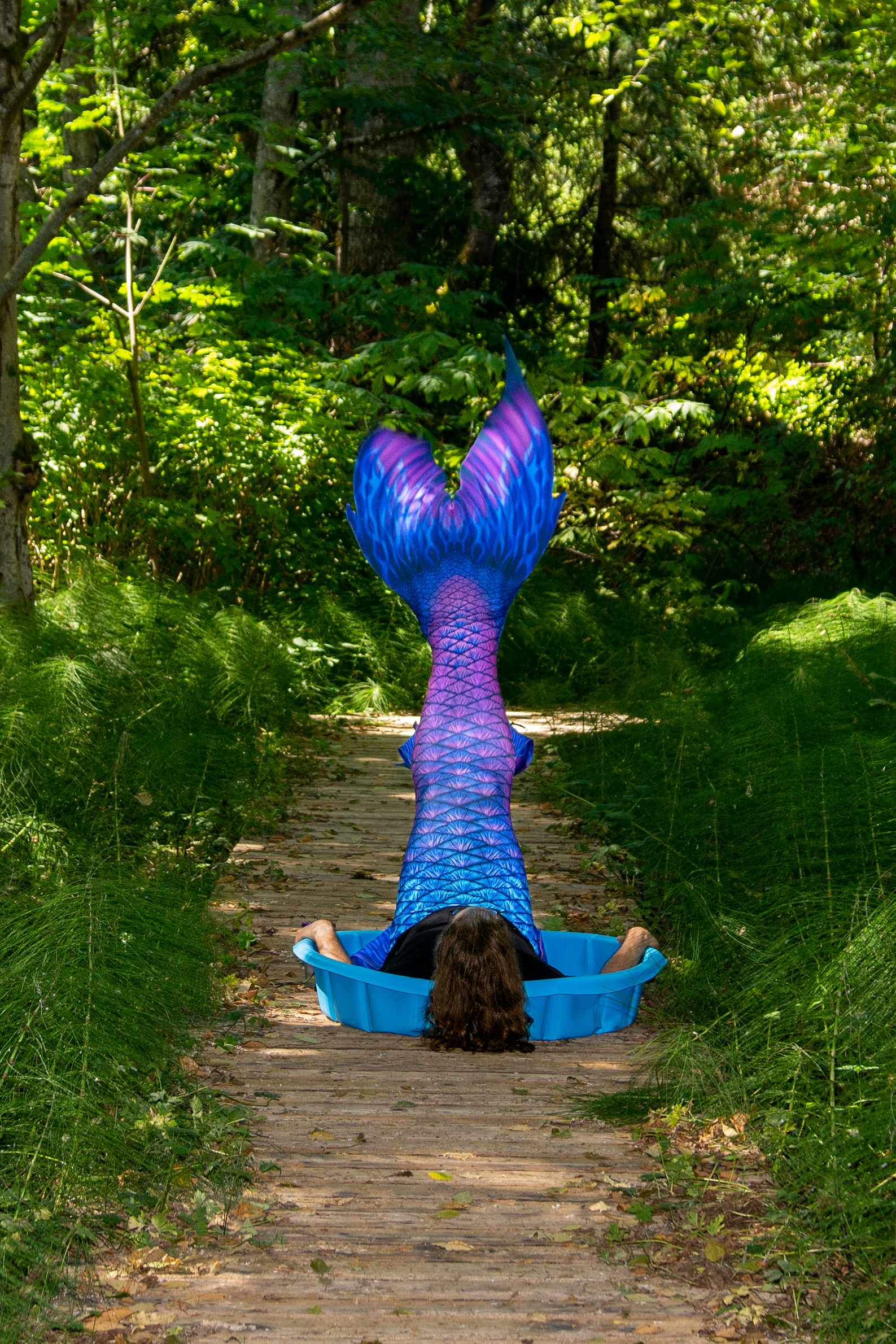 Mermaid Me Summer 2020 Photo #1250